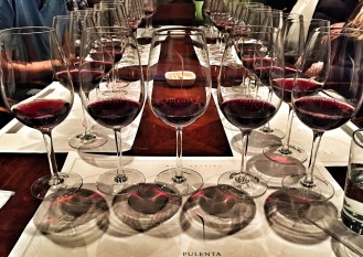 The tasting line up from Pulenta
