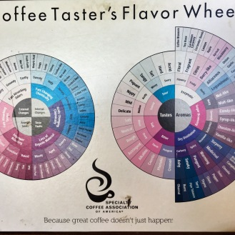 Coffee Taster's flavour wheel