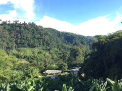 The Hacienda tucked away in the hills